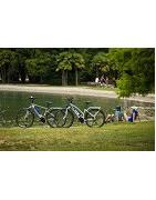 Biciclette con pedalata assistita city bike, mtb, strada